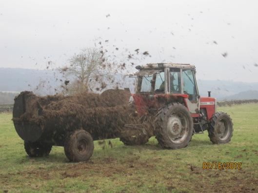 Frank muck-spreading on the farm.
