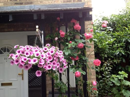 Flowers in Newnham, Cambridge