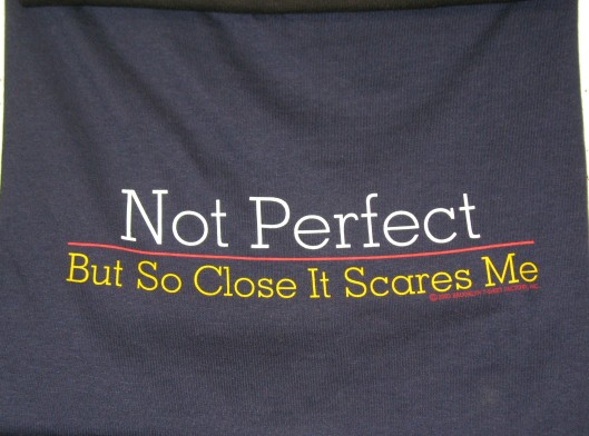 t-shirts:  Not Perfect   But So Close It Scares Me