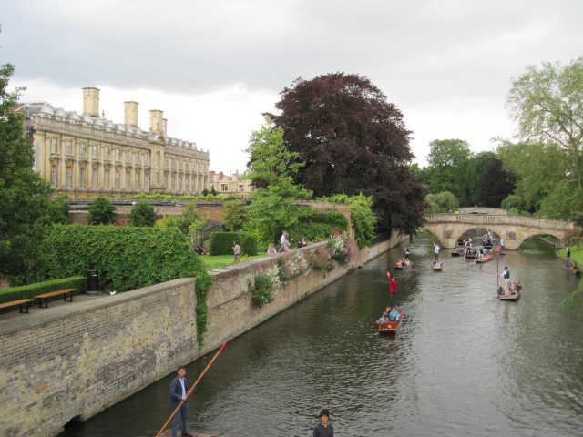 colleges and punting