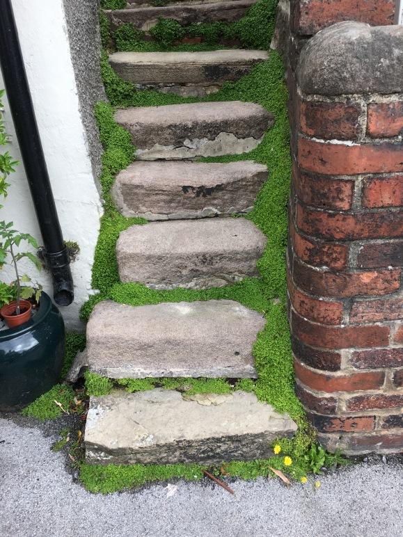 Green steps.